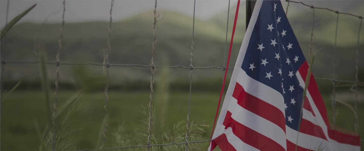 Image of an American Flag by a fence