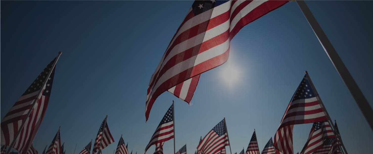 Image of American flags staked and flowing in the wind